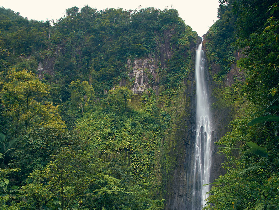 La Guadeloupe et ses défis environnementaux
